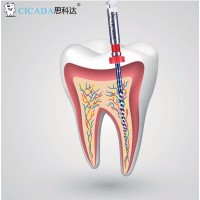 Файлы CICADA Niti Endodontic files  набор, 25 мм, (10/20, 03/18, 04/20, 06/25, 04/35)  5 шт./упак.